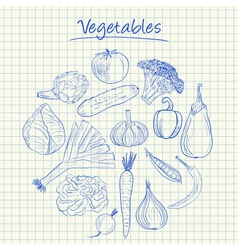 vegetables doodles squared paper vector image