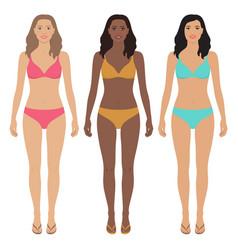 Asian african american and european women vector