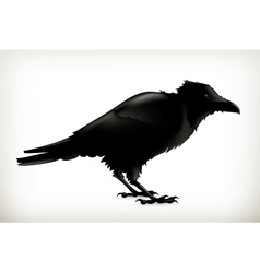 Black raven silhouette vector image vector image