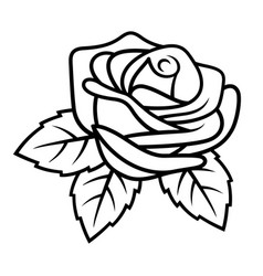 rose sketch 002 vector image vector image