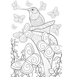Adult coloring bookpage a cute hummingbird in a vector