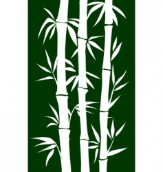 bamboo tree vector image
