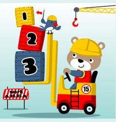 Bear cartoon cute forklift driver vector