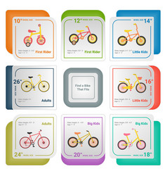 Bicycle infographics isolated on a white vector