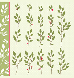 collection branches and green leaves vector image