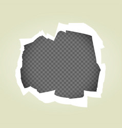 paper hole transparent background vector image