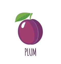 Plum icon in flat style on white background vector image