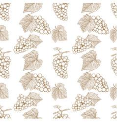 seamless pattern with hand drawn grape design vector image