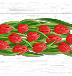 spring background with blooming tulip vector image