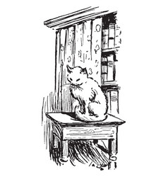 A cat sitting on an end table by a bookshelf vector