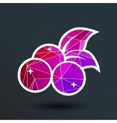 Blueberry farm juicy logo symbol vector