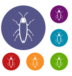cockroach icons set vector image