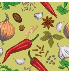 Hand drawn seamless set of organic spices vector image