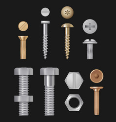 metallic bolts and screws construction hardware vector image