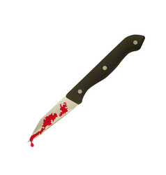 murder with a knife vector image