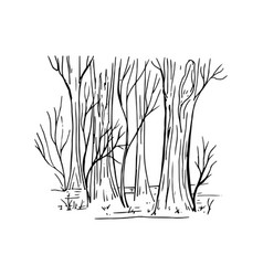 Painted fragment of forest vector