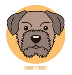 portrait of border terrier vector image
