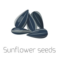 Seeds on white background vector