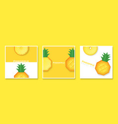 set of fruit banners with pineapple vector image