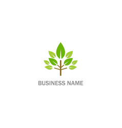 tree green leaf organic logo vector image