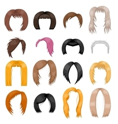 Wigs hairstyle vector