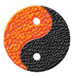 yin and yang made of caviar vector image