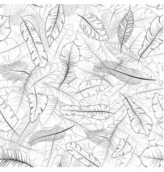 different exotic feathers seamless pattern on vector image