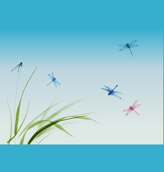 dragonflies flying over the grass and blue summer vector image