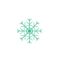 Flake of snow Icon vector image