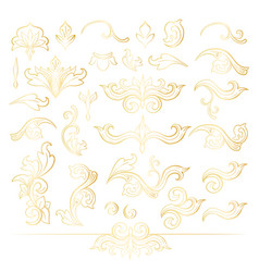 Golden isolated headpiece floral decorations vector