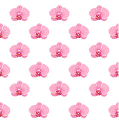 phalaenopsis orchid pink floral seamless pattern vector image