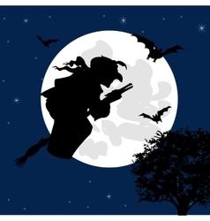 Sorceress flies on broom vector