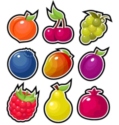 Yummy fruits vector