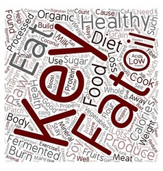 The Keys To Healthy Weight Loss And Wellness text vector image vector image