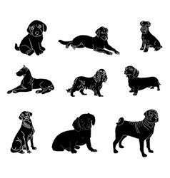 silhouettes of dogs of different breeds vector image