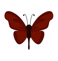 isolated cute butterfly icon vector image