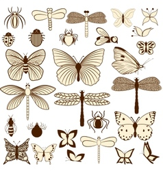 Set stylized insects for decorating your work vector