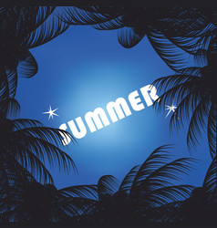 summer sky and palm trees vector image