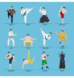 Asian martial arts vector image