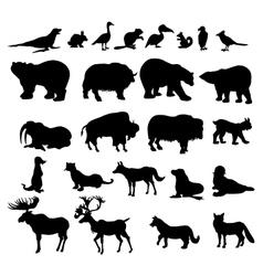 Animals set in canada vector