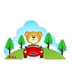 Little bear driving a car vector image vector image