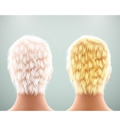 Back of head vector image