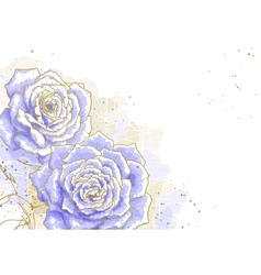 Blue roses on white background vector image