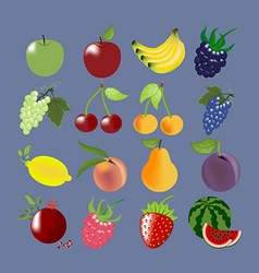 Fruit icons set vector