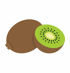 Kiwi on white background vector