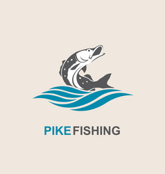 Pike fish icon vector