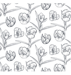 seamless pattern with hand drawn spring vector image