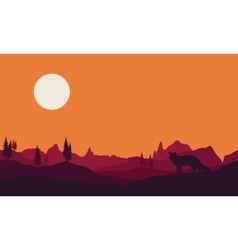 Silhouette of fox in hills vector image