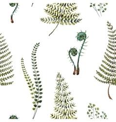 Watercolor fern pattern vector image