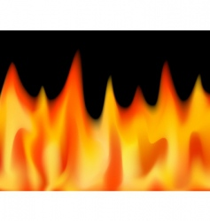 flamed vector image vector image